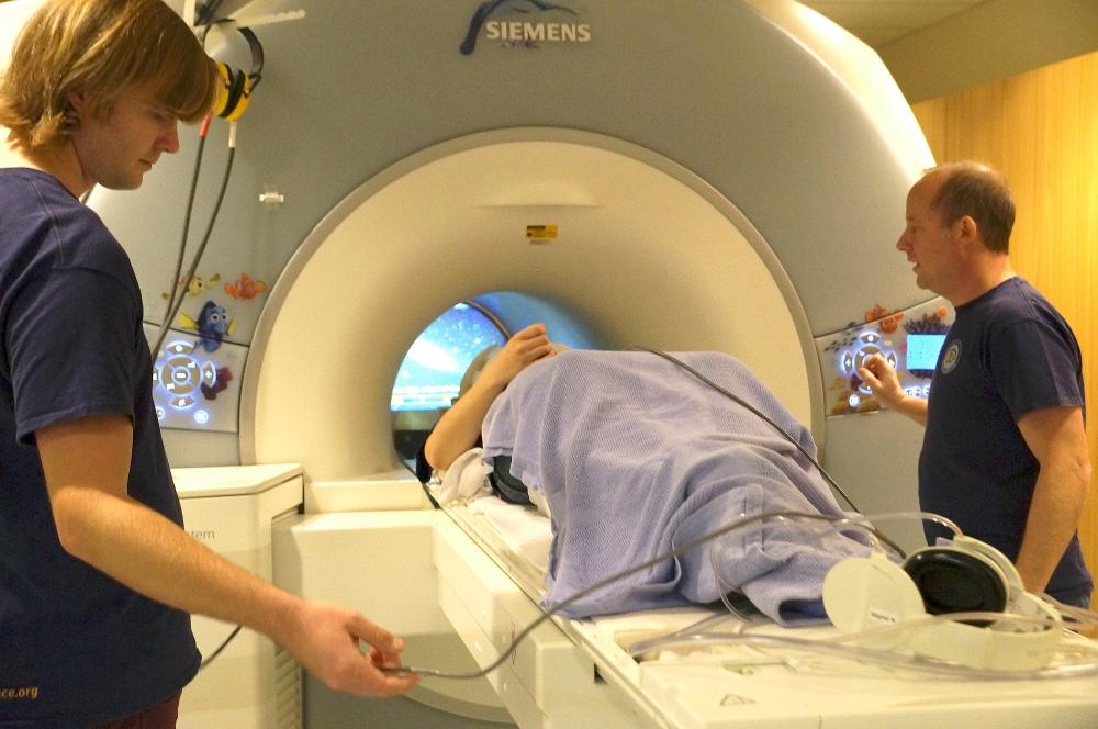 Hoe werkt fMRI? Peter Moleman