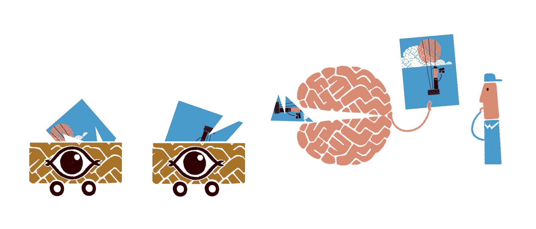 Je kijkt met je ogen, maar ziet met je hersenen. Peter Moleman
