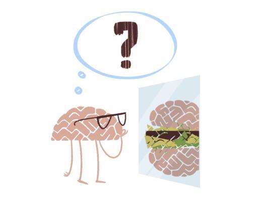 Hoe werkt fMRI? | Peter Moleman